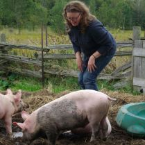 Laurie with pigs2