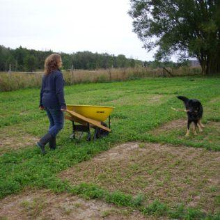 wheelbarrow Bosco